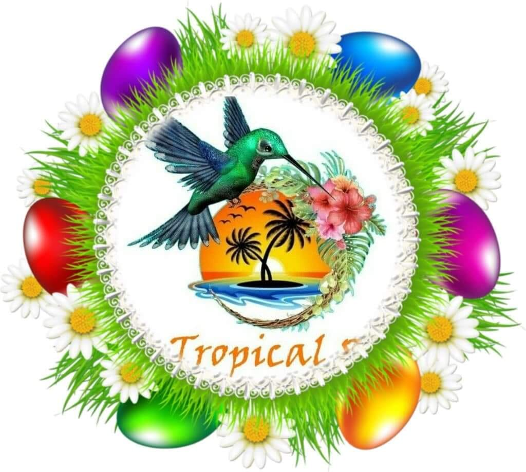 Ecouter Tropical89 Misick Soleil
